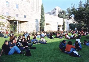 Groupings of students talking on grass